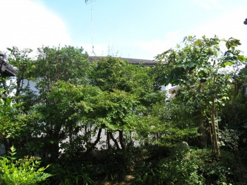 F邸雑木庭園