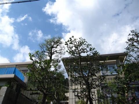 高城台N邸'14施工後 (1)